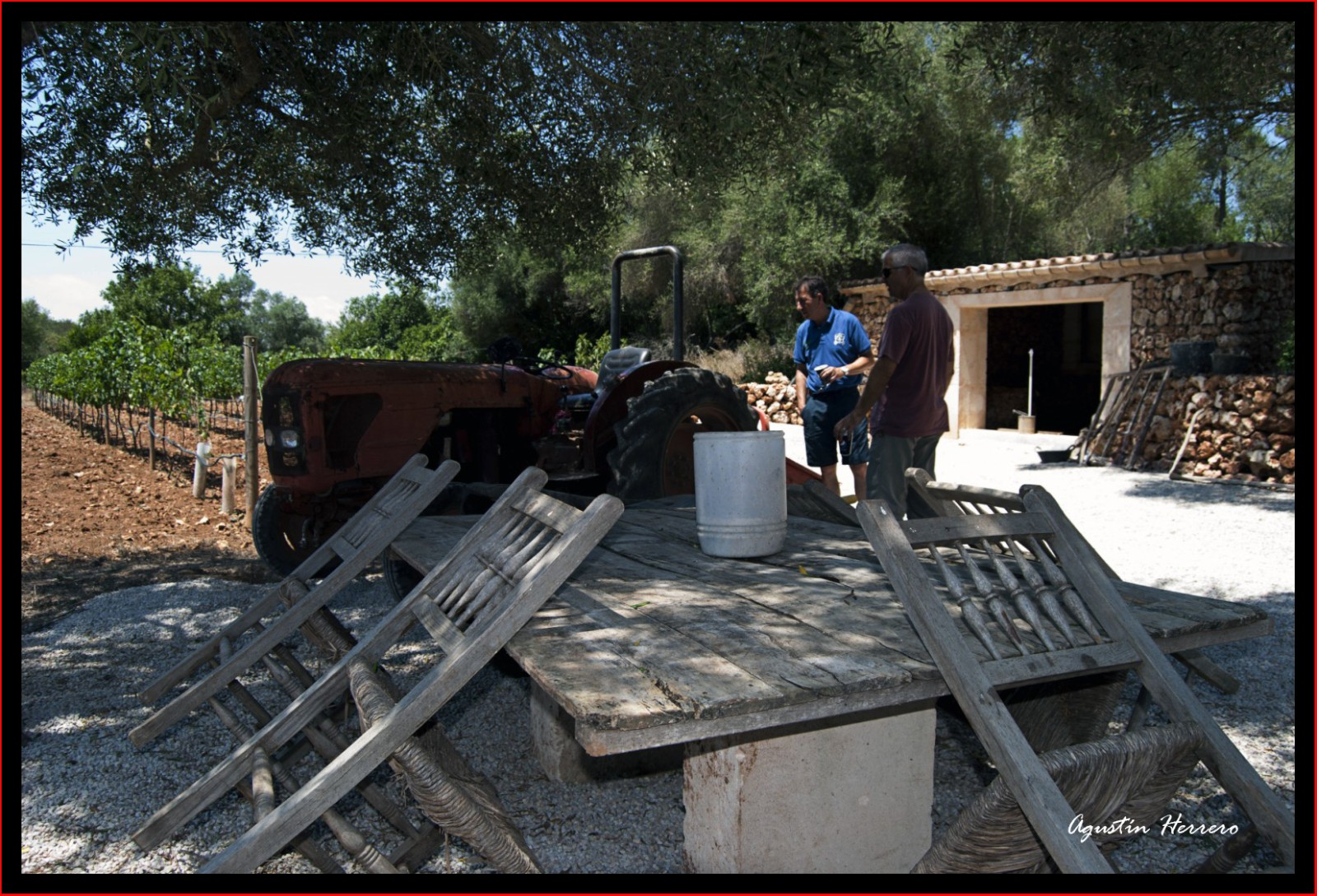 2011-07-17-ludwic-house-44