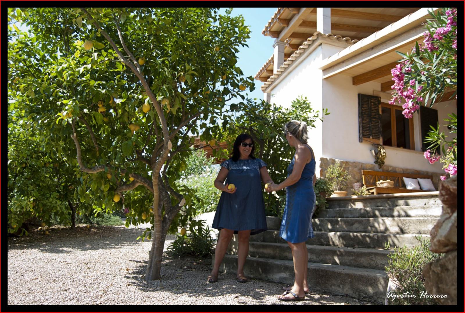 2011-07-17-ludwic-house-54