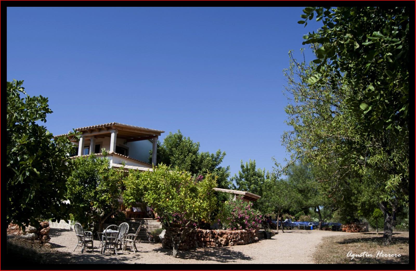 2011-07-17-ludwic-house-58